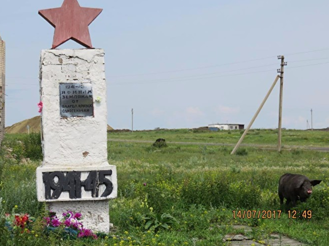 ВЧелябинской области мемориал участникам ВОВ используют как пастбище