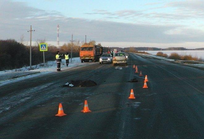 Надороге Челябинск-Троицк КамАЗ сбил девушку-пешехода