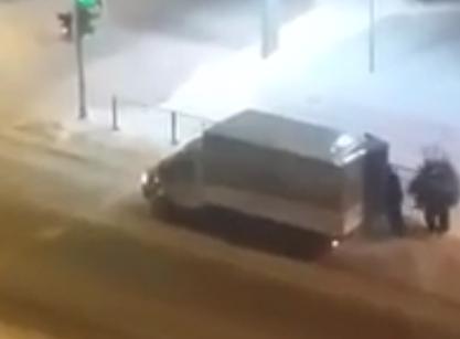 «Собаки» украли ёлки впарке наЛуначарского