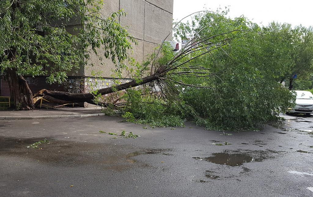 МЧС объявило экстренное предупреждение обухудшении погоды вЧелябинской области